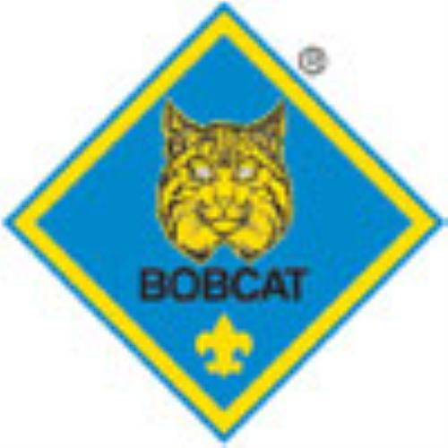 Public Ranks - Cub Scout Pack 5 (Binghamton, New York)