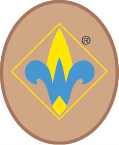 Public Webelos Page Cub Scout Pack 707 Wilmore Kentucky
