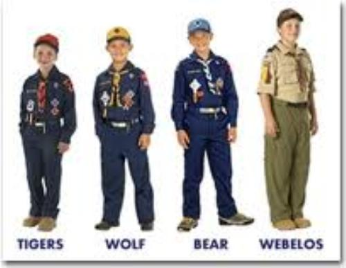 Cub scout adult uniform inspection