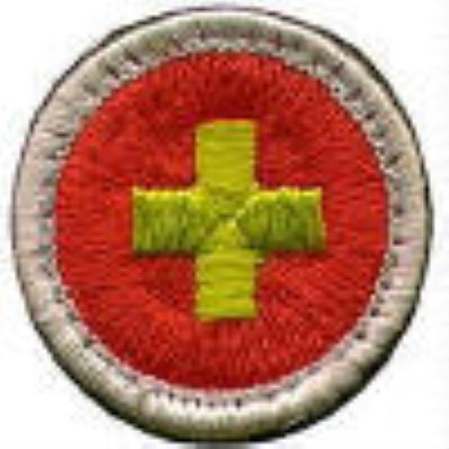 Pictures Crime Prevention Merit Badge Worksheet Roostanama
