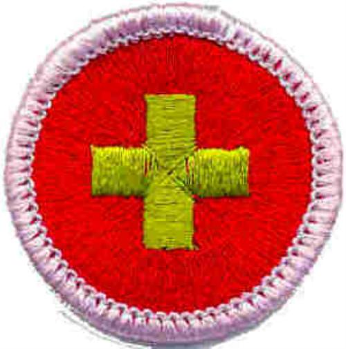 Public Eagle Merit Badges  Boy Scout Troop  Maryland Heights