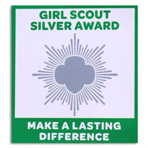 girl scout silver award. Black Bedroom Furniture Sets. Home Design Ideas