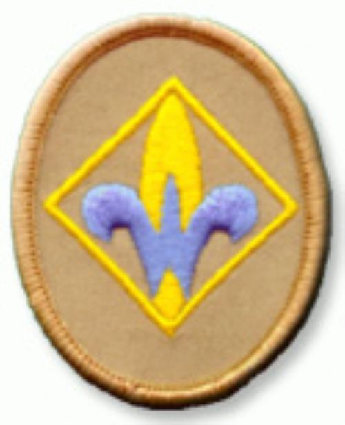 Public Webelos Cub Scout Pack 513 Plumas Lake California