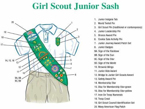 Junior girl scout pin