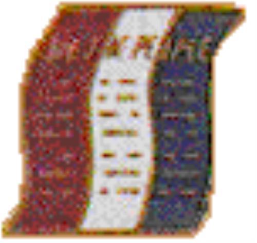 Public Webelo Cub Scout Pack 1909 Eastpointe Michigan