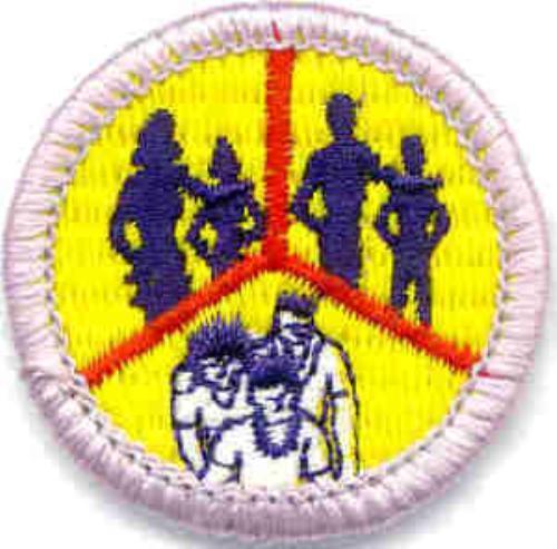 Public Advancement - Boy Scout Troop 245 (Trussville, Alabama)