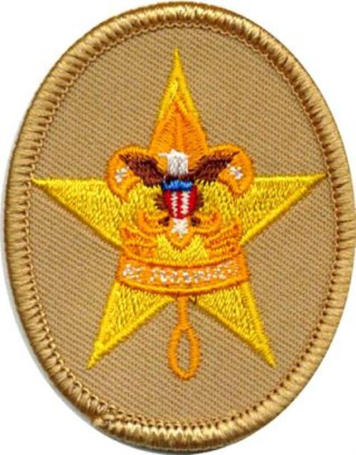 eagle scout application essay example
