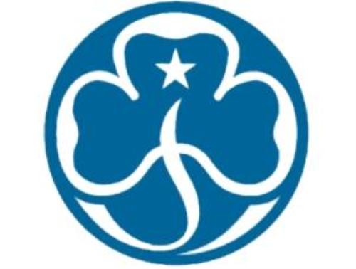 public girl scout basics   girl scout troop 265