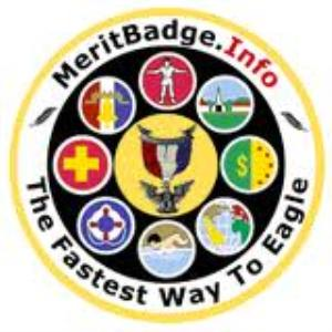 Badge application 34124a blue card pdf merit badge requirements