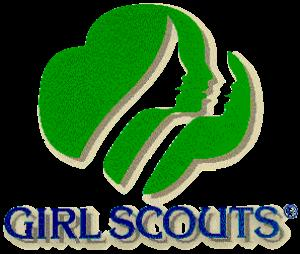 girl scout troop 893 zionsville indiana homepage