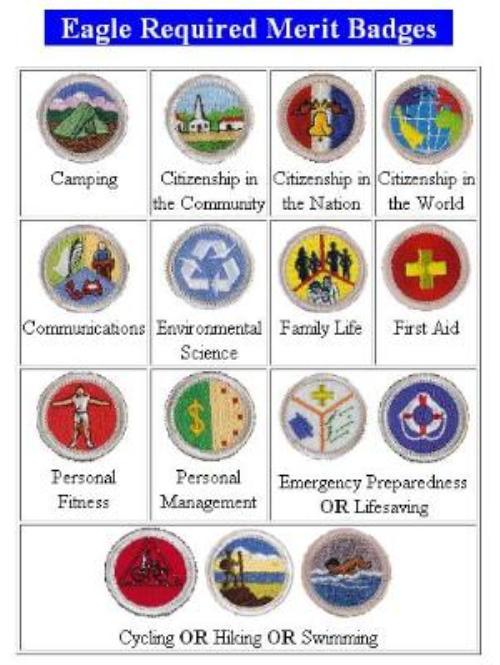 Public Troop FAQ Boy Scout Troop 1750 finksburg Maryland – Sports Merit Badge Worksheet